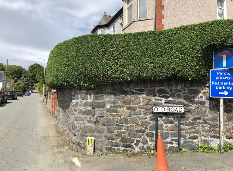 professional hedge cutting conwy