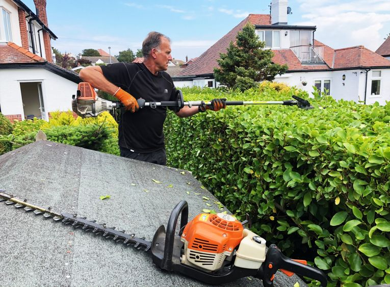 hedge maintenance cutting service conwy north wales